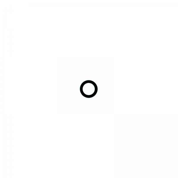 iPhone 6/6S Kameralinse